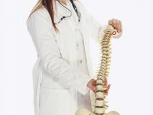 Special Skills for Being a Chiropractor