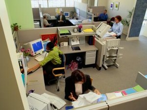 Workplace Environment & Its Impact on Employee Performance