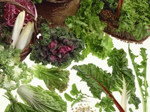 List of Dark Green Leafy Vegetables