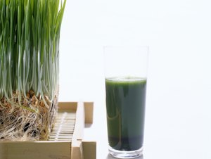 Benefits of Wheatgrass Shots