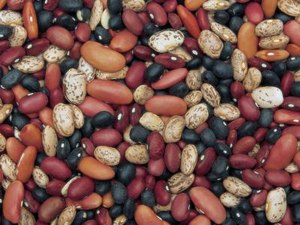 The Health Benefits of Legumes