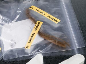 forensic scientist job descriptions
