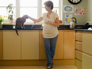 What Are the Causes of Cats Being Itchy & Pulling Fur Out of Their Tails?
