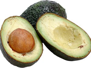 Is Avocado Poisonous to Cats, Dogs & Horses?