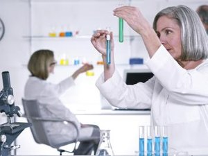 What Is the Difference Between A Descriptive & A Regulatory Toxicologist?