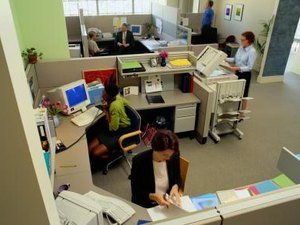 Importance of the Work Environment on Employee Production