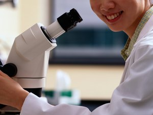 Career as a Research Scientist