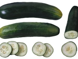 Nutrient Facts for an Unpeeled Cucumber