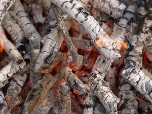 How to Use Ash for Compost