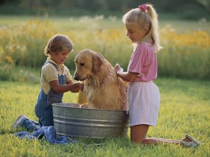 Recipe for Dog Shampoo Using Glycerine