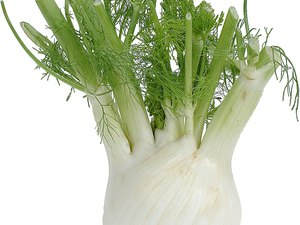 Benefit of Fennel