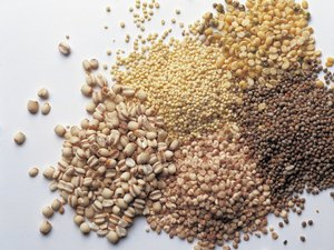 What Percentage of Grain Consumption Should Come From Whole Grains?