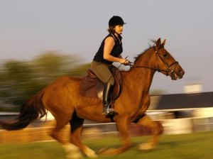 Pilates Exercises for Horseback Riders