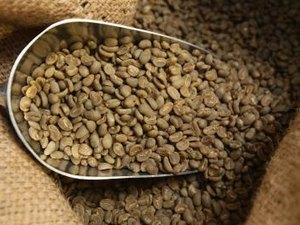 Coffee Futures Trading Basics
