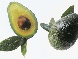 Can Avocados Make You Fat?