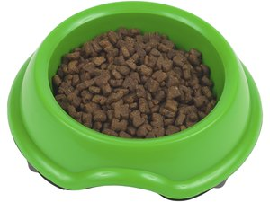 Homemade Dried Dog Food