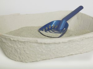 What Are the Benefits of Clumping Cat Litter?