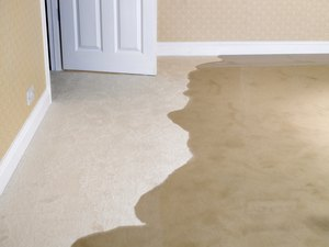 How to Get Insurance to Pay a Water Damage Claim