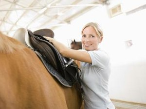 Equine Center Management Duties
