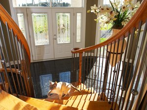 How to Keep Cats From Going Up the Stairs