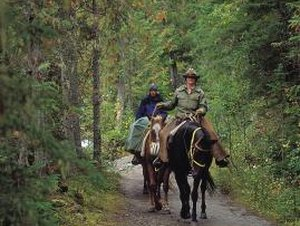 What U.S. States Employ Forest Rangers?