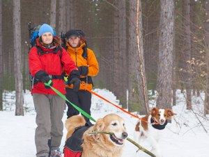 Trails to Backpack with Dogs