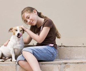 Home Remedies For Stool Eating In Dogs Dog Care Daily