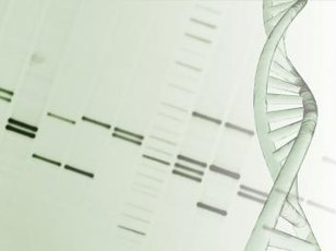Gene patenting provides economic protection for inventors of genetically modified organisms.