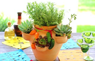[Article Image] - Herb and Succulent Centerpiece
