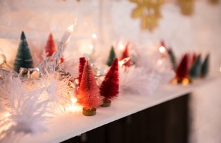 [Article Image] - Make Bottle Brush Christmas Trees