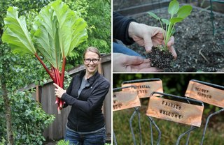 [Article Image] - 19 Tips to Get a Vegetable Garden Growing