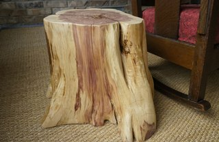 [Article Image] - How to Create a Tree Stump Table