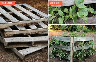 [Article Image] - How to Make Raised Beds From Pallets