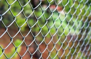 [Article Image] - How to Prevent Sticker Bushes From Growing Through Your Chain-Link Fence
