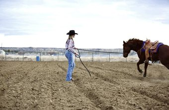 Young Woman practicing for Rodeo with horse