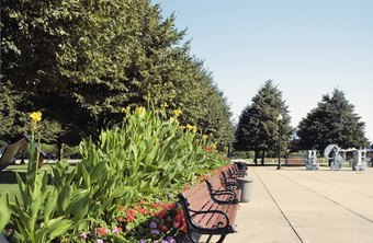 Landscape designers may incorporate hardscaping into their plans.