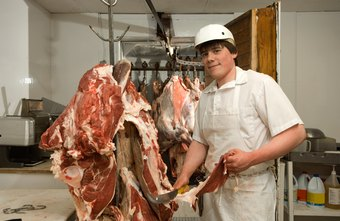 Most slaughterhouse labor positions do not require formal post-secondary education.