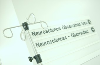 Neurosurgeons are among the highest paid professionals in neuroscience.