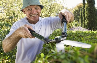 The landscaping industry thrives in the spring and summer months.