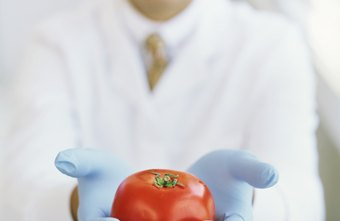As of 2012, the BLS reports a food technologist's average salary at $64,140 per year.