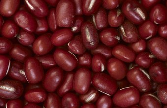 Adzuki beans are a nutritious protein source.