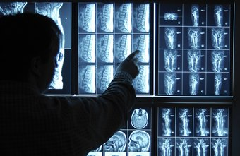 Neurologists work with disorders of the brain and nervous system.