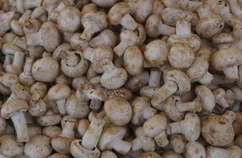 Button mushrooms have experienced less increase in demand than oyster, shiitake and other specialty mushrooms.