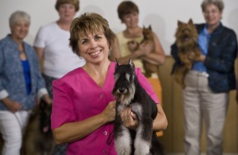 Many dog handlers enroll in the American Kennel Club's Registered Handlers Program.