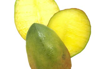 African mango seeds contain crude protein, fat and carbohydrates.