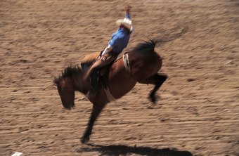 Rodeo careers involve frequent travel and sometimes low or no pay.