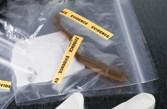 DNA analysts help to analyze evidence found at crime scenes.