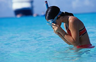 You don't need to go deep to practice the basics of snorkeling.