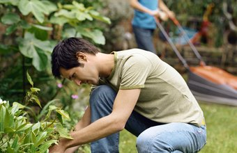 A landscaping contractor services diverse residential and commercial accounts.