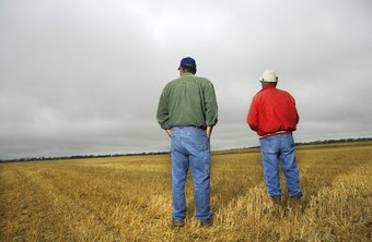 Weather is a major concern for farmers.